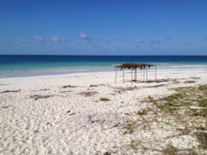 Optez pour le Mozambique : un voyage en Afrique prometteur